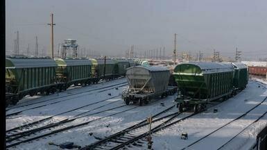 Более 40 крупных компаний Казахстана обсудили экспорт зерна